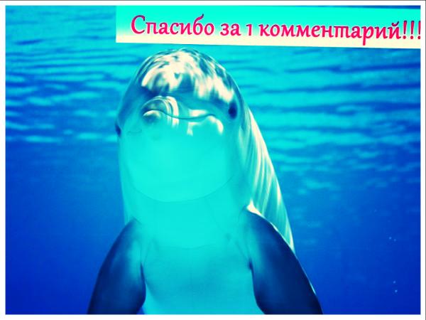блог юлии шериной